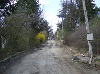 vt6.jpg