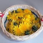 кошничката с набрани цветове